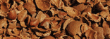 Nut shells and almond shells